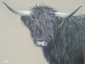 Black Highland Coo, commission