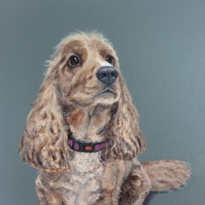 Sophie, commission